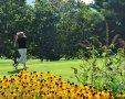 2016-summer-golf-02